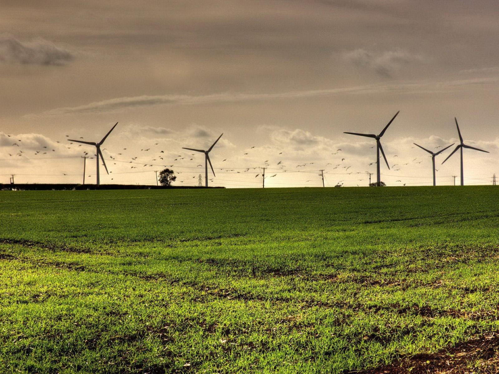 parc éolien collectif