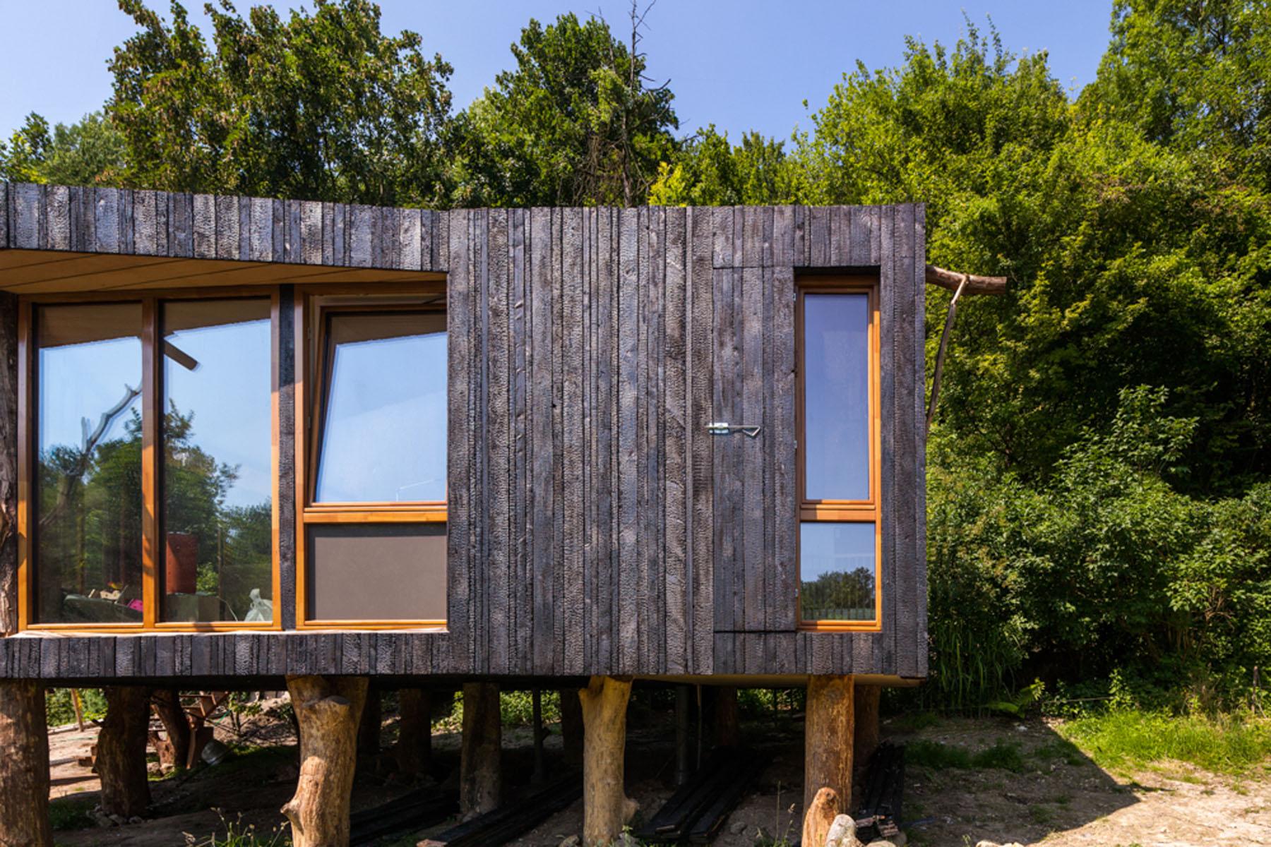 Maison Japonaise Traditionnelle Construire matériau : le bois brûlé ou shou sugi ban   la maison écologique